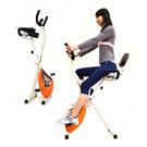 【SAN SPORTS 山司伯特】背靠大椅!寶獅X折疊健身車