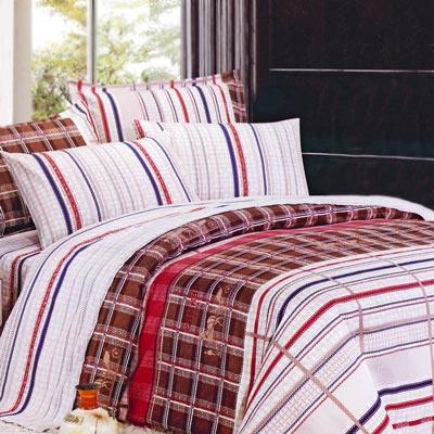 美夢元素 天鵝絨-兩用被套床包組-雙人加大 (溫情經典)