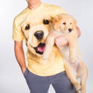 摩達客 美國進口The Mountain小黃金獵犬 純棉短袖T恤