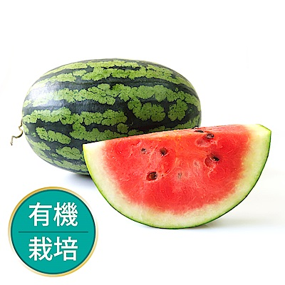 【果物配】甜美人西瓜_有機4.8kg±10%(2~3顆)