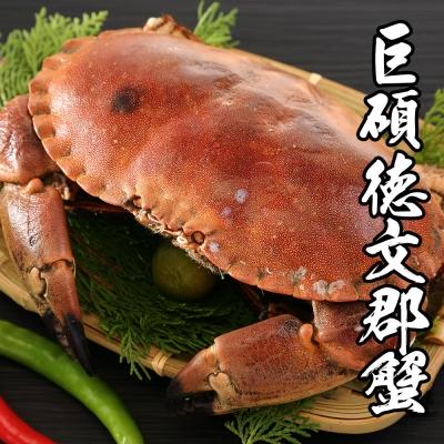 海鮮王 英國巨碩德文郡蟹*1隻 900g±10%隻(任選)