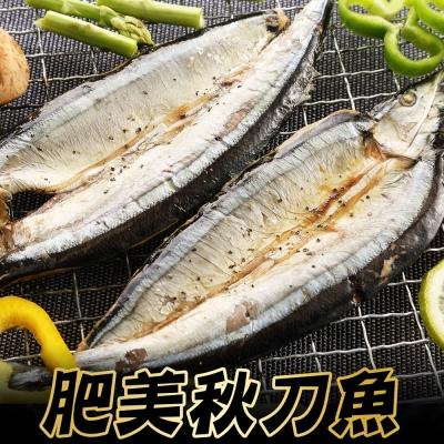 嚴選肥美秋刀魚 *4組(4-6尾裝) (600g±10%/包)