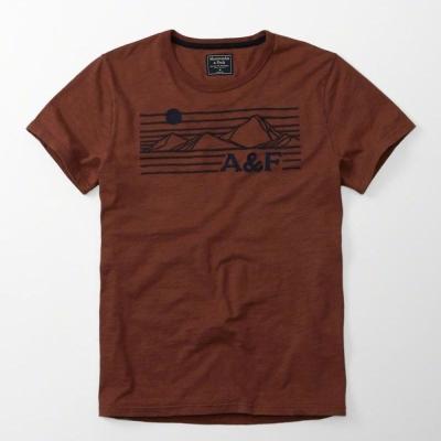 AF a&f Abercrombie & Fitch 短袖 T恤 酒紅色 0050