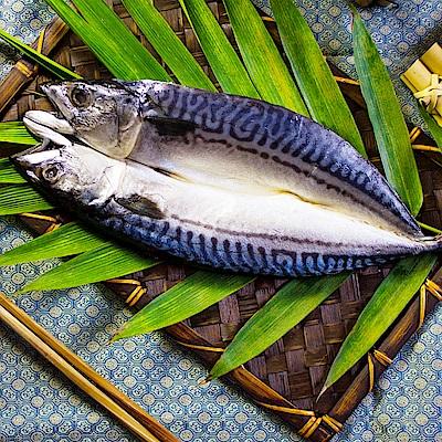 買一送一 好神 嚴選挪威鯖魚一夜干10尾組(300g/尾 共20尾)