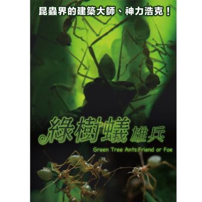 綠樹蟻雄兵 DVD