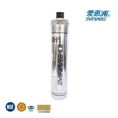 台灣愛惠浦-Everpure-公司貨-BH2-濾心