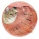 Marukan 貓咪俱樂部(轉轉呼嚕貓球)CT-319 product thumbnail 1