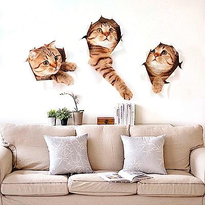 Pond's 立體視覺壁貼~可愛小貓 超大尺寸73x40cm