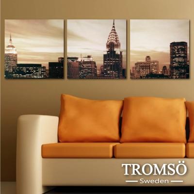 TROMSO時尚無框畫 三聯式-美景紐約