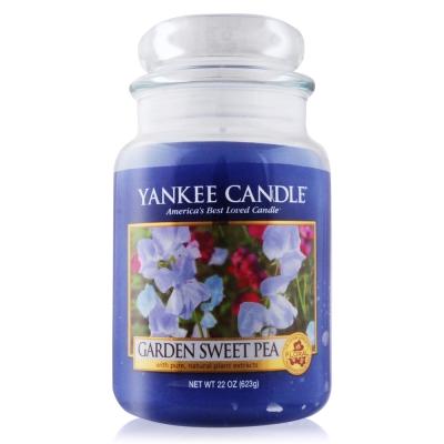 YANKEE CANDLE香氛蠟燭- 豆豆花園623g