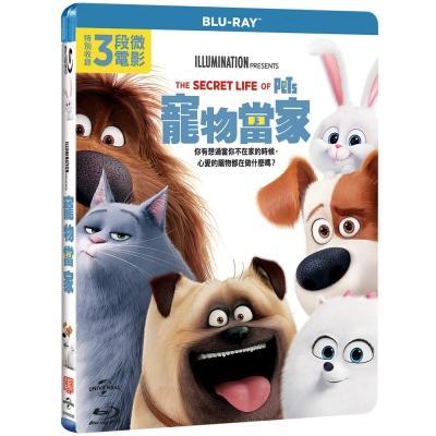 寵物當家-The-Secret-Life-of-Pets-藍光-BD