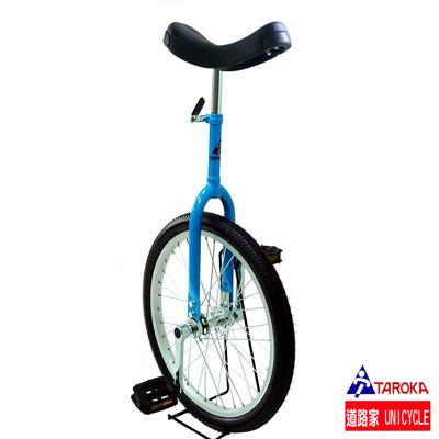 TAROKA-道路家20吋單輪車-天空藍