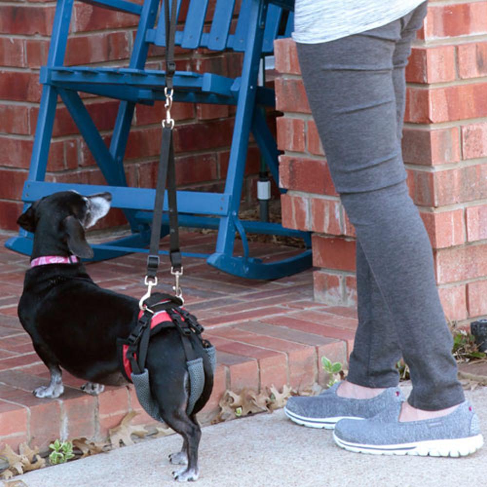 美國SOLVIT寵物介護 寵物後肢?用輔助提拉助行帶S號 (紅色)