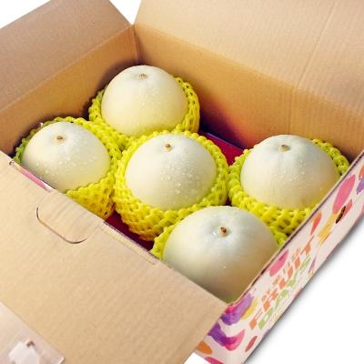 鮮果日誌 - 嘉義特級美濃瓜(3.5斤禮盒裝)