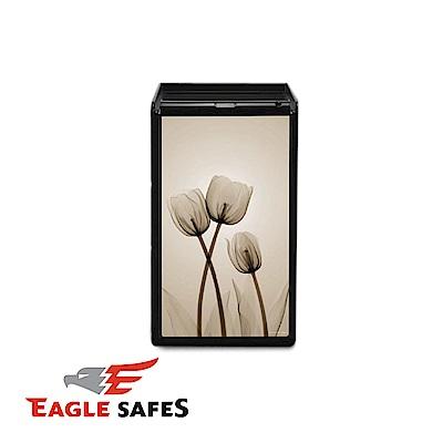 凱騰 Eagle Safes 韓國防火金庫 保險箱 (LU-3000HT S2)