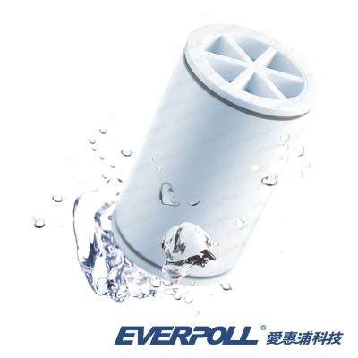 EVERPOLL微分子潔膚活水器專用濾芯