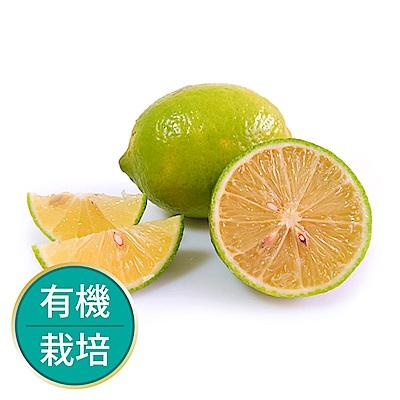 【果物配】檸檬.有機轉型期(做飲料最安心/6公斤)