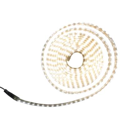 Tree Walker LED單色軟燈條-單珠 白光