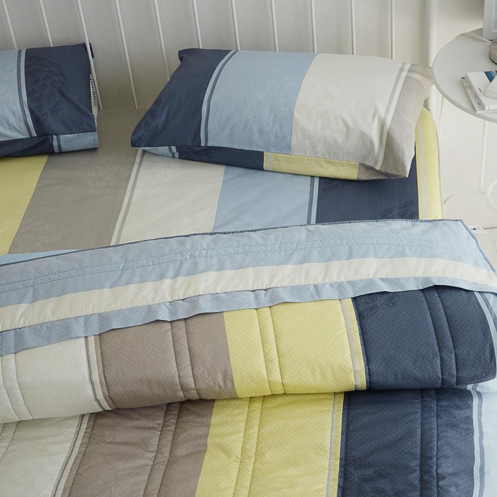 絲薇諾 MIT精梳純棉 普羅旺斯 雙人四件式-薄床包鋪棉被套組