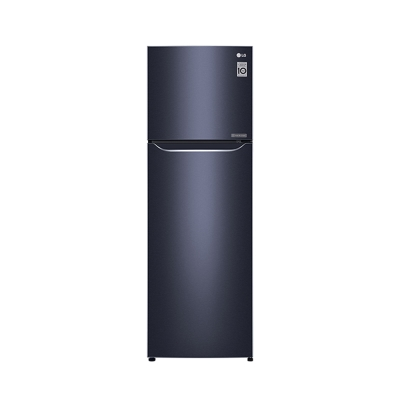 LG樂金 253L 1級變頻2門電冰箱 GN-L307C 典雅藍