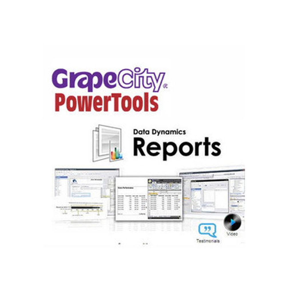 Data Dynamics Reports(下載版)