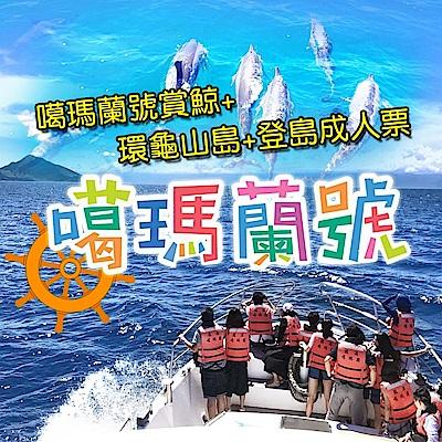 (宜蘭)噶瑪蘭號賞鯨+環龜山島+登島成人票(2張)