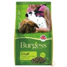 Burgess伯爵 高機能兔飼料-成兔2kg 2入