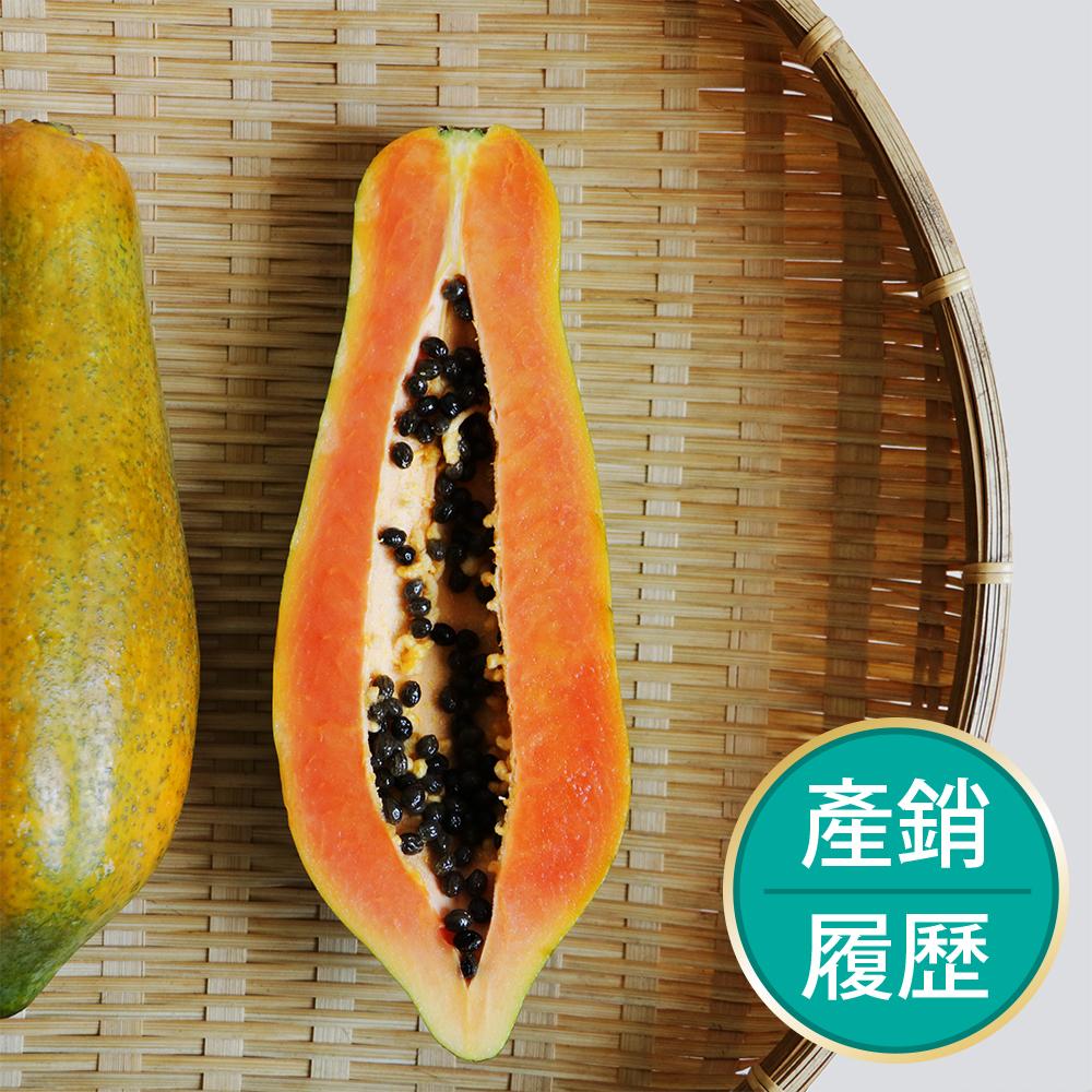 【果物配-任選799免運】木瓜.產銷履歷(700g/1~3條)