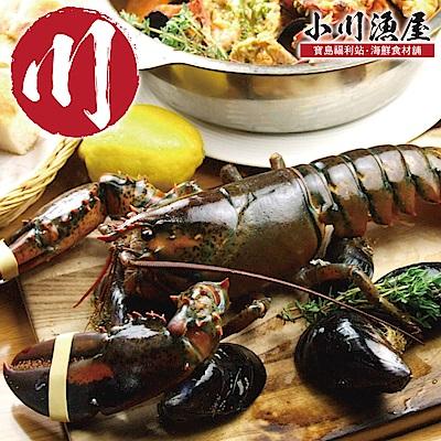 小川漁屋 金牌高壓活凍波士頓龍蝦2尾(650G+-10%/尾)