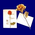 黃金 玫瑰花or 康乃馨 贈精美卡片 金箔花禮品