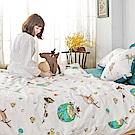 戀家小舖 / 雙人床包兩用被組  迷路漂流日記  100%精梳棉  台灣製