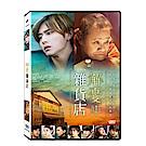 解憂雜貨店 DVD