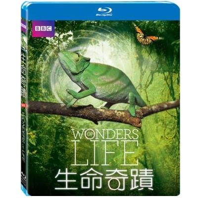 BBC 生命奇蹟 Wonders Of Life  藍光  BD