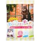 PINE 可愛貓咪糖(80g)