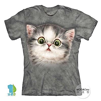 摩達客 美國The Mountain 貓咪吃貓草 喵嗚 短袖女版T恤