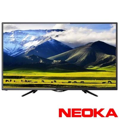 NEOKA 24吋 LED抗藍光液晶顯示器+視訊盒 24NS100