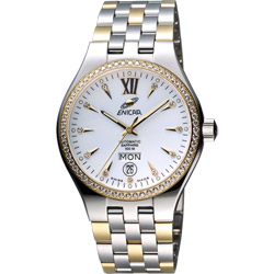 ENICAR 英納格 傳真系列時尚晶鑽機械腕錶-白x雙色版/39mm