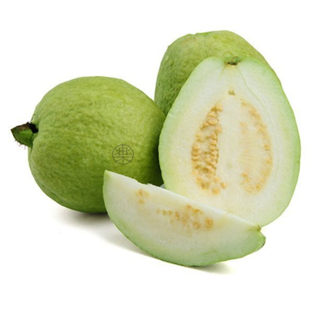 果之蔬 頂級套網燕巢牛奶珍珠芭樂5台斤±10%