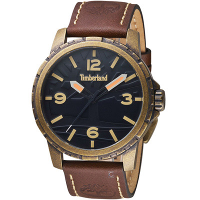 Timberland狂野硬派時尚腕錶(TBL.15257JSA 02)-44mm/咖啡