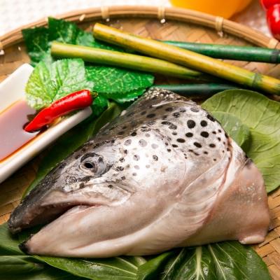極鮮配 挪威鮭魚頭 (500g±10%/包)-6入組