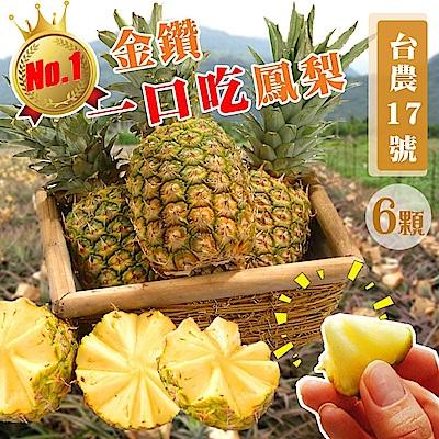 【天天果園】台灣一口吃蜜鳳梨(400g/顆) x6顆
