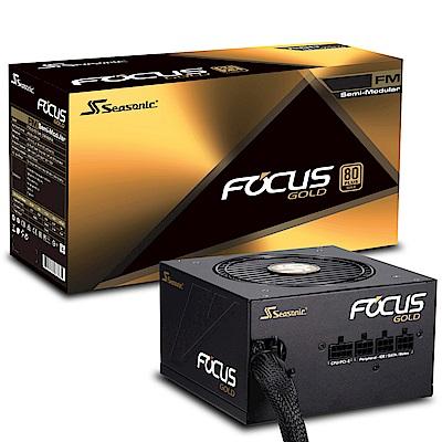 海韻 FOCUS  650w  金牌  半模組  電源供應器