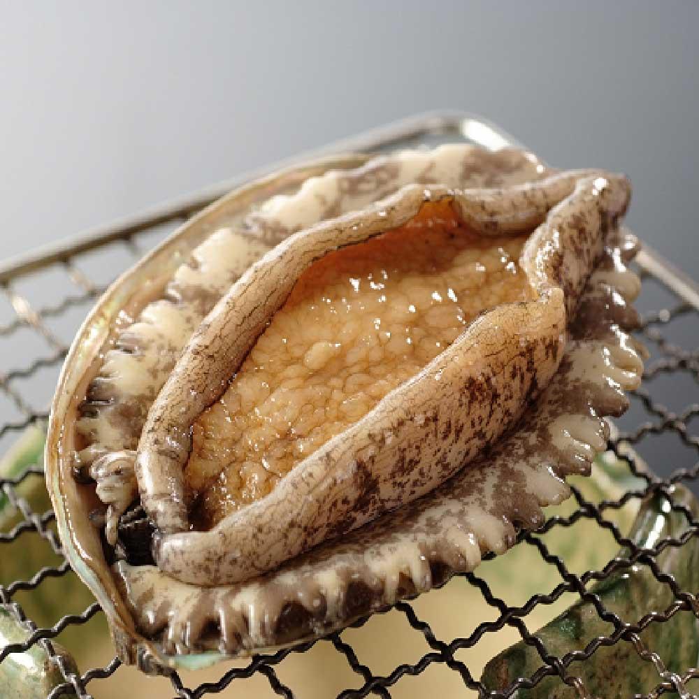 寶島福利站 特級超鮮活凍帶殼鮑魚3盒(1000g/盒/約12~13粒)