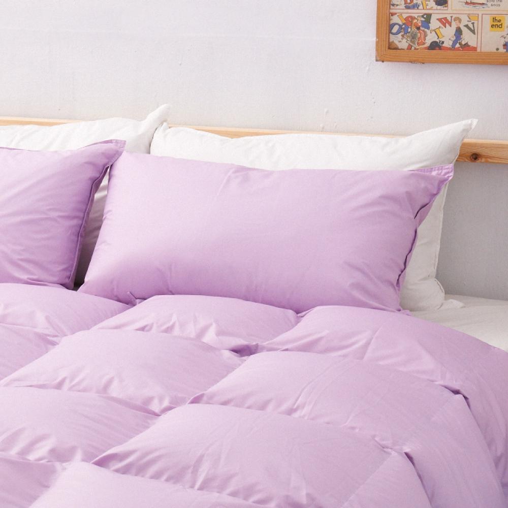 遊遍天下MIT台灣製天然水鳥羽絨枕2入夢幻紫