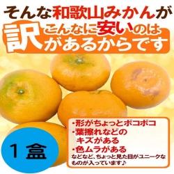 果之蔬日本溫室蜜柑1盒(5入/盒,約350g±10%