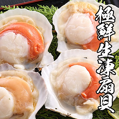 【海鮮王】極鮮生凍半扇貝 *2包組(7-10顆/500g±10%/包)
