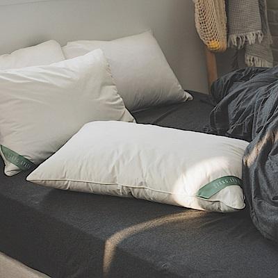翔仔居家 物理防螨水洗枕-適中款(45cmx74cm)