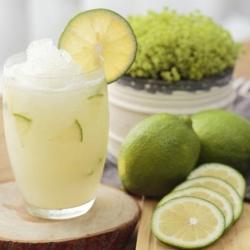 花蓮佳興冰店 檸檬汁(600ml/瓶)