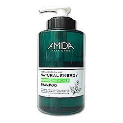 Amida 蜜拉平衡去脂洗髮精 1000ml