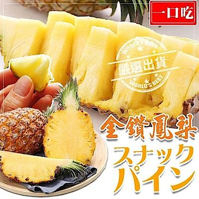 【天天果園】台農17號春蜜金鑽鳳梨12斤(約6-8顆)